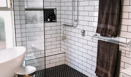 Bathroom renovation ideas accessible shower